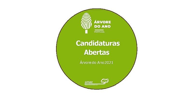 Candidaturas abertas para a Árvore do Ano 2021